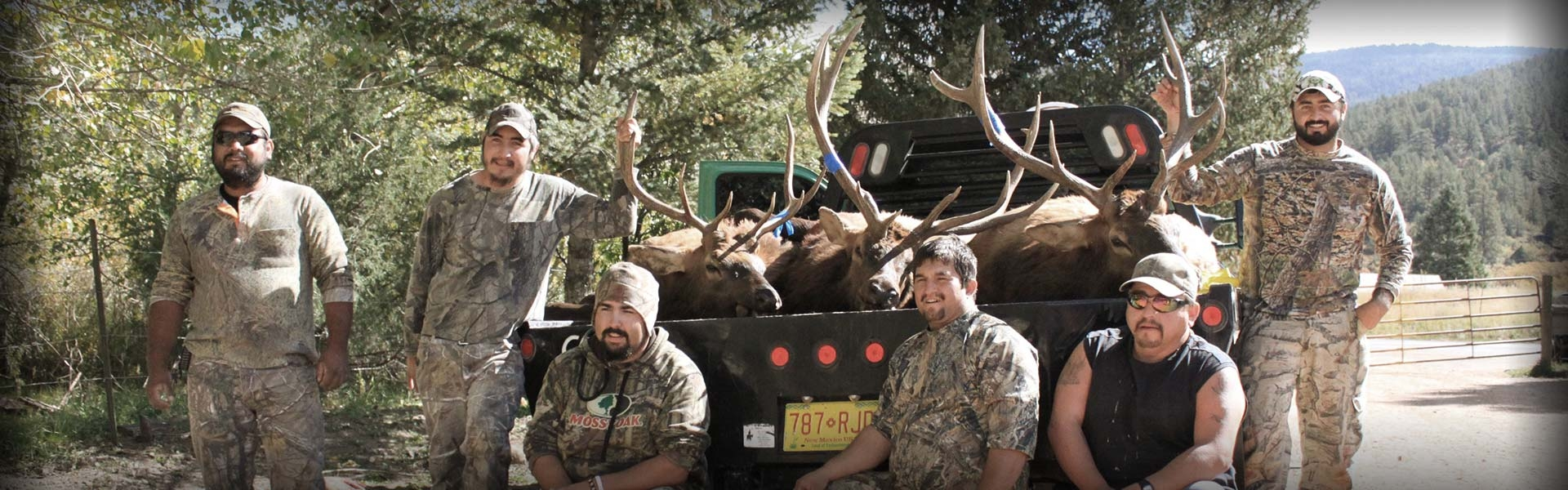 New Mexico Trophy Elk Hunts, Experience the Bugle.