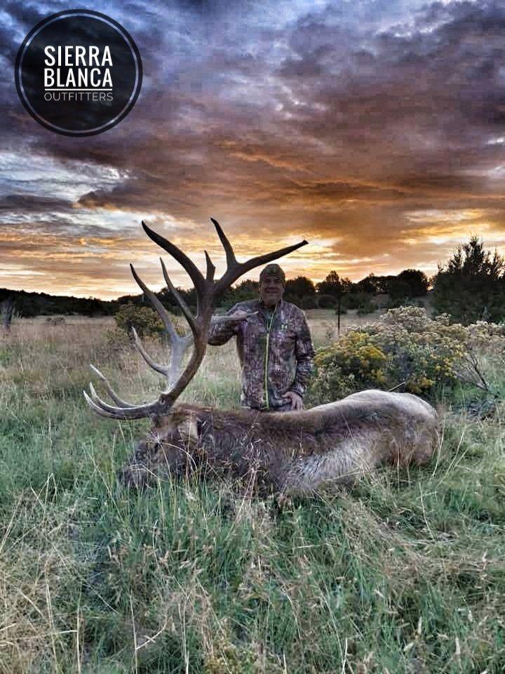 New Mexico Elk Hunting Photos