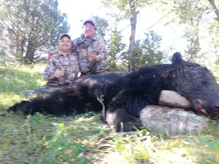 Hunting Bear in NM