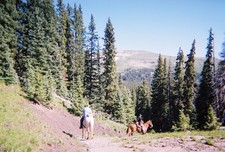 On Horseback in New Mexico