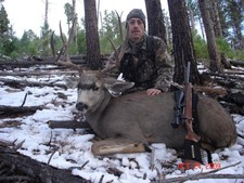 Nice New Mexico Mulie