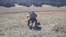 new-mexico-prairie-dog-hunt